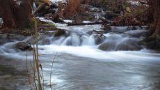Río Carríon a su paso por Palencia