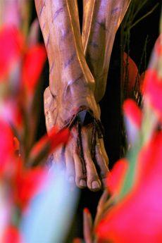 Cristo de la Misericordia. Palencia.