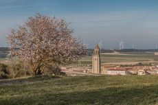Ampudia (Palencia)