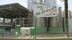 Los trabajadores de Lauki retoman las movilizaciones en defensa de sus puestos de trabajo