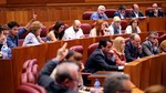 Las Cortes aprueban 57 de 143 propuestas de resoluci�n de los grupos, 22 por unanimidad