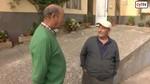 La negativa de 3 vecinos de Noviercas puede evitar que la vaquer�a m�s grande de Europa se instale en el municipio