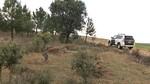 Muere un hombre en una zona próxima a un incendio forestal en Guijosa, Soria