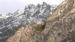 La Guardia Civil localiza sin vida a los 3 montañeros zamoranos desaparecidos en Picos de Europa
