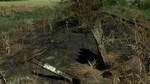 Almaz�n sufre en los �ltimos d�as hasta 10 conatos de incendio que han podido ser provocados