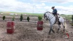 Hontalbilla sede del I Concurso de Equitaci�n de Trabajo
