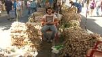 La m�xima calidad contin�a siendo la prioridad de la Feria del Ajo de Zamora