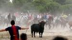 Tordesillas celebrar� el 13 de septiembre el Toro de la Pe�a, un festejo sin lidia ni muerte del animal