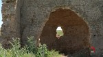La Asociación Hispania Nostra incluye en su Lista Roja de Patrimonio la iglesia de Alconeza, en Berlanga de Duero