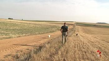 Comienza la media veda en Castilla y León, marcada por la sequía y la carencia de paja en el campo