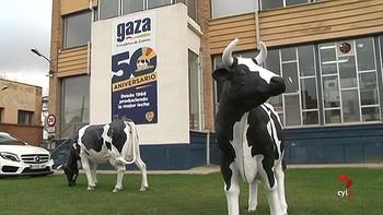 Gaza decidirá en los próximos días si amplía la fábrica en Zamora o se va