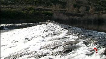 La CHD construye una rampa para peces en el río Tera a su paso por Puebla de Sanabria