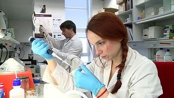 Investigadores salmantinos descubren una mutación que predice la recuperación cerebral tras un ictus
