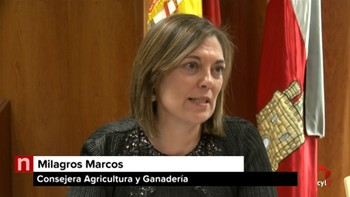 La Junta cede 164 hectáreas a 15 ayuntamientos sorianos destinadas a fijar jóvenes y mujeres en el campo