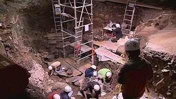 Podemos conocer el ADN de un oso de hace 400.000 años encontrado en Atapuerca, Burgos