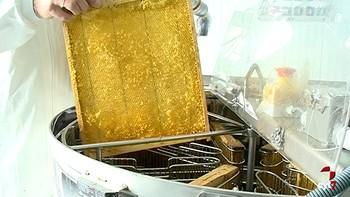 Los apicultores piden una norma de etiquetado más rigurosa