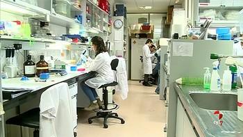 Descubren un mecanismo de resistencia a un fármaco usado en el tratamiento del cáncer de mama