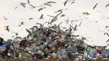 La Unión Europea aplicará un impuesto sobre plásticos no reciclados para reducir su impacto