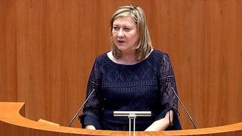 Del Olmo presenta unas cuentas 'buenas' para 'impulsar la economía' y 'garantizar unos servicios públicos de calidad'
