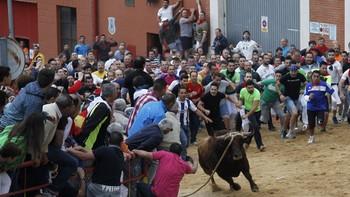 El Toro Enmaromado de 2018 cubre en tiempo récord una carrera que termina sin incidentes de consideración