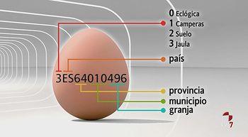 Lo que nos importa un huevo y una gallina