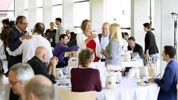 Un total de 84 expertos cata en Burgos las 2.020 muestras de vinos de los Premios Zarcillo 2018