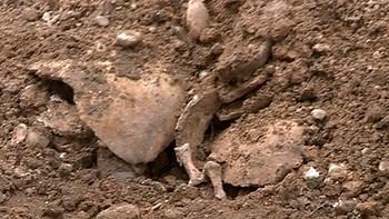 La Asociaci�n de la Memoria Hist�rica recupera otros 5 cad�veres sin identificar en Valladolid