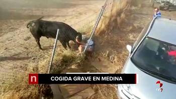 Una persona resulta herida de gravedad en el encierro de este sábado en Medina del Campo, Valladolid