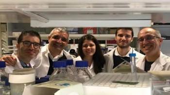 Identifican un gen que ayuda a frenar uno de los cánceres pediátricos más frecuentes en España