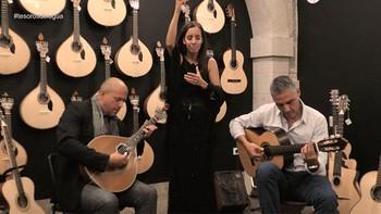 Dónde escuchar fado en Oporto por un módico precio