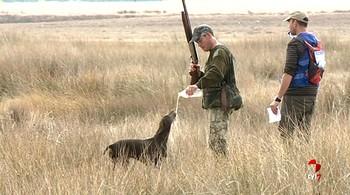 La sequía condiciona la caza en Castilla y León