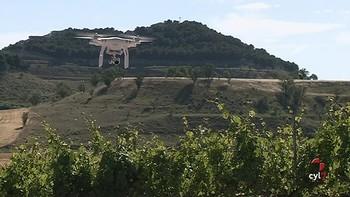 Drones al servicio de la viticultura por primera vez en una bodega de la Ribera del Duero
