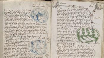 La editorial burgalesa Silo� reproduce el enigm�tico manuscrito Voynich, del siglo XV