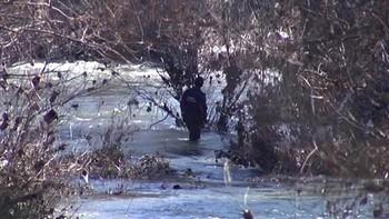 Hallan en el río el cadáver de la soriana asesinada por su pareja en Navarra