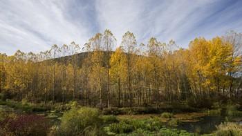 El Parque Natural del Cañón del Río Lobos contará con un sistema pionero de prevención de incendios