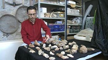 Un agricultor descubre un nuevo yacimiento con huesos de dinosaurios en Hortigüela, Burgos