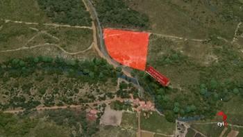 El Royo, Soria, pondrá en marcha un proyecto de cultivo de frutos del bosque para luchar contra la despoblación