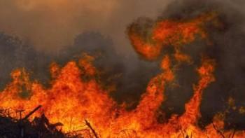 Asturias contabiliza 35 incendios forestales y se mantiene activada la situación 1