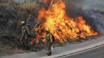 El humo del incendio de nivel 2 de Navarredonda obliga a cortar al tráfico la N-502 y la AV-941 y AV-P-514
