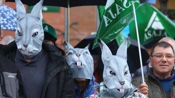 Los agricultores exigen indemnizaciones por los daños causados por la plaga de conejos