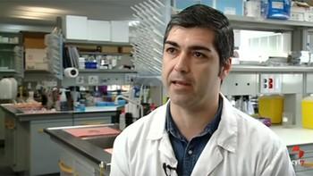 Investigadores de la Usal logran mejorar el movimiento y olfato de ratones con células madre, un nuevo avance en Alzheimer y Parkinson