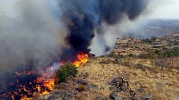 Sube a nivel 2 el incendio declarado en Pereña de la Ribera, Salamanca