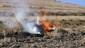Los agricultores, 'encendidos' por quemar tan tarde