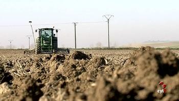 Castilla y León pelea por priorizar las ayudas de la PAC para el agricultor activo