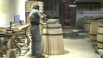 El sector vitivinicola emplea a 19.000 personas en Castilla y León
