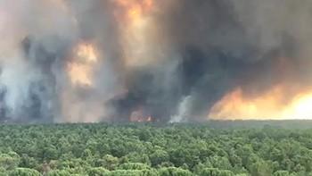 La Junta eleva al nivel uno el incendio declarado en un pinar de Nieva, Segovia
