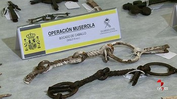 Recuperan 92 piezas celtibéricas 'de incalculable valor' cerca de un yacimiento de la comarca del Alfoz de Lara, Burgos
