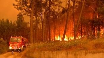 Situación preocupante por los incendios en Portugal