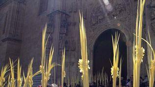 RTVCyL arranca el s�bado la programaci�n especial de Semana Santa