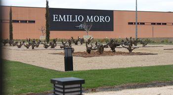 Bodegas Emilio Moro invierte 3,5 millones de euros en la ampliaci�n de sus instalaciones